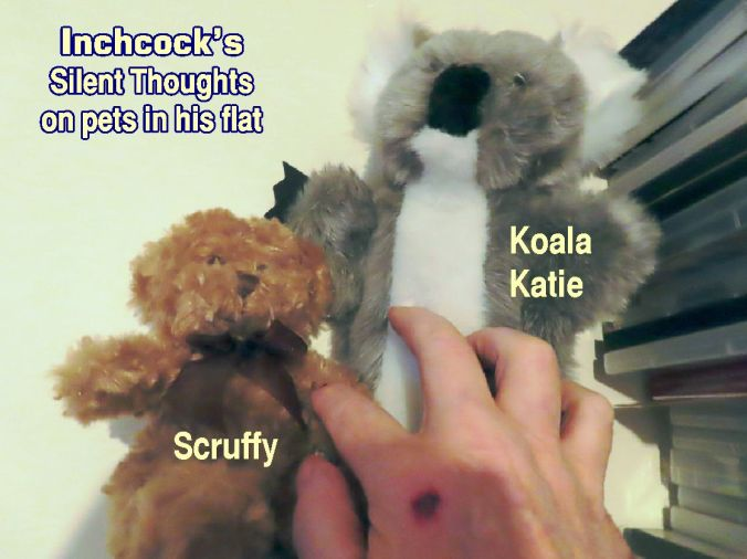 Scruff & Koala